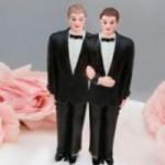 torta-gay