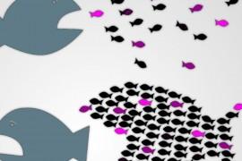 La Coalizione Sociale verso una nuova stagione di lotte. Per i diritti, il reddito e la democrazia, contro le disuguaglianze – In piazza il 17 Ottobre